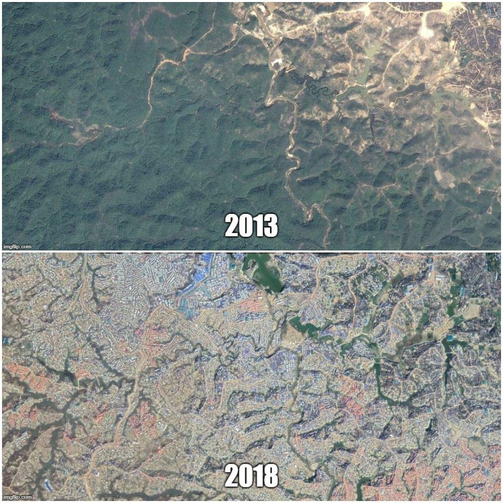 Två satellitbilder av Cox's Bazar som visar hur det såg ut före flyktinglägret byggdes och efter. Idag är all skog borta.